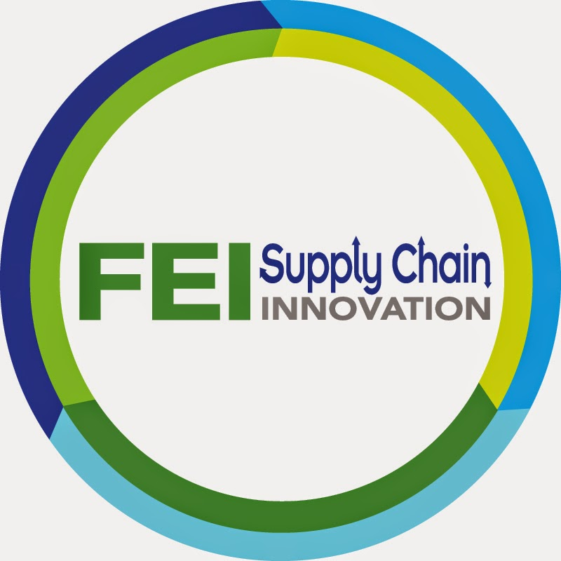 FEI: Supply Chain Innovation